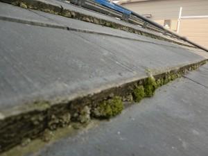 日夏の高圧洗浄の現場 |滋賀県東近江市の外壁塗装&雨漏り専門店 片山