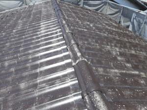屋根シーラー後