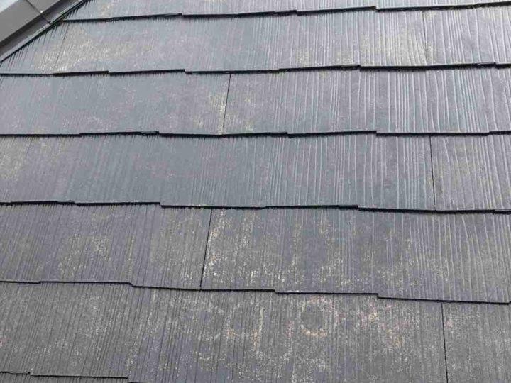 屋根下塗り2回目後